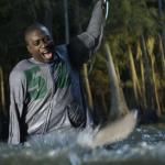The one armed man kills the Hammerhead Shark