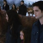 The battlefield in Breaking Dawn Part 2