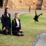 The curious case of the crow in Vampire Academy