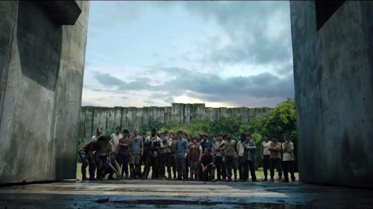 The Maze Runner – They're all starting to look the same now tmr ...